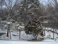 winter-21